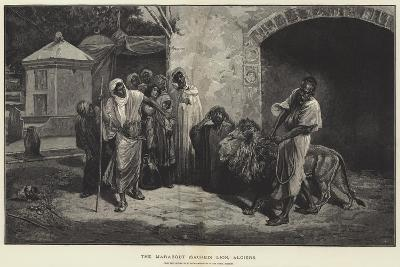The Marabout (Sacred) Lion, Algiers-Eugene Pavy-Giclee Print