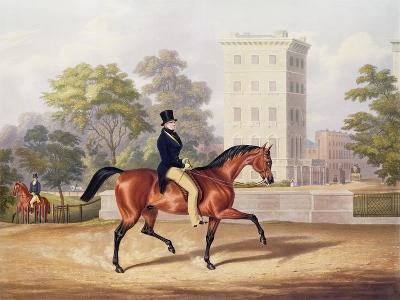 The Marquis of Anglesea on Horseback in Hyde Park, in His 80th Year, Engraved by J. Harris, 1847-George Henry Laporte-Giclee Print