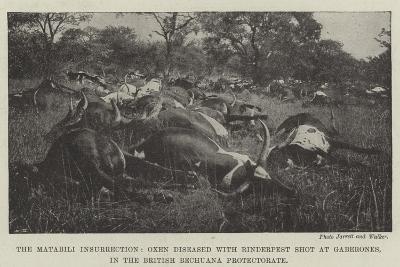 The Matabili Insurrection--Giclee Print