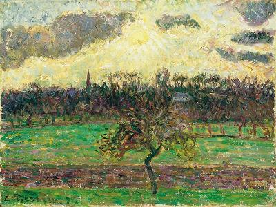 The Meadows at Éragny, Apple Tree, 1894-Camille Pissarro-Giclee Print