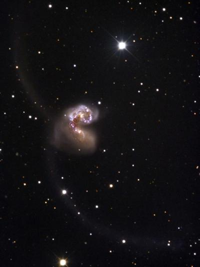 The Merging Galaxies NGC 4038 and 4039, Popularly Referred to as the Antennae Galaxies-Robert Gendler-Photographic Print