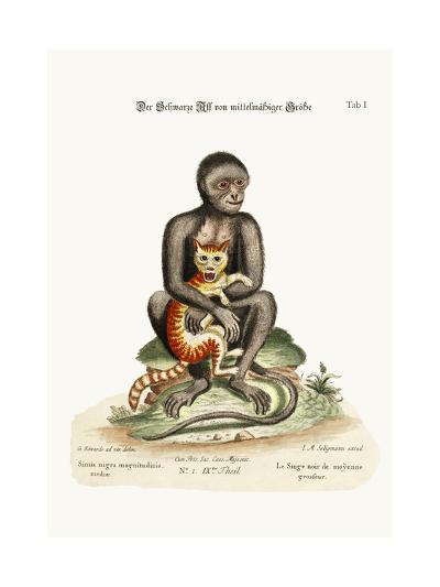 The Middle-Sized Black Monkey, 1749-73-George Edwards-Giclee Print