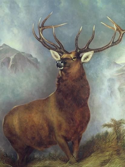 The Monarch of the Glen-William Widgery-Giclee Print