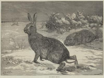 The Months, February-George Bouverie Goddard-Giclee Print