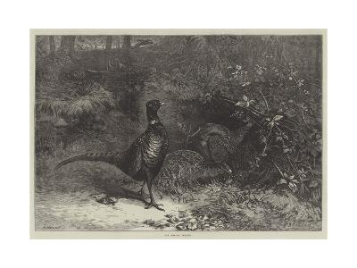 The Months, October-George Bouverie Goddard-Giclee Print