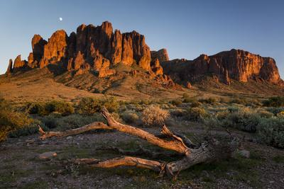 https://imgc.artprintimages.com/img/print/the-moon-rising-above-the-western-superstition-mountains-lost-dutchman-state-park-arizona_u-l-q19ntrw0.jpg?p=0