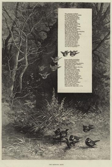The Morning Bath--Giclee Print