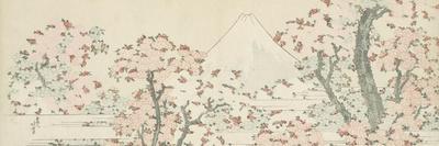 https://imgc.artprintimages.com/img/print/the-mount-fuji-with-cherry-trees-in-bloom_u-l-pts5pr0.jpg?p=0