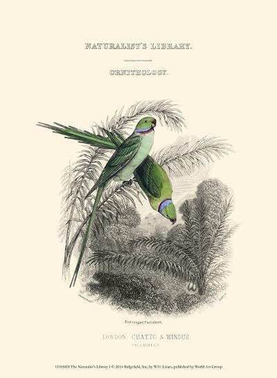 The Naturalist's Library I-W^h^ Lizars-Art Print