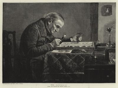 The Naturalist--Giclee Print