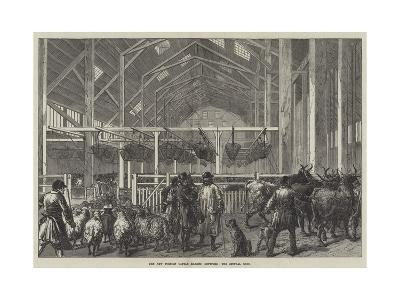 The New Foreign Cattle Market, Deptford, the Central Shed--Giclee Print
