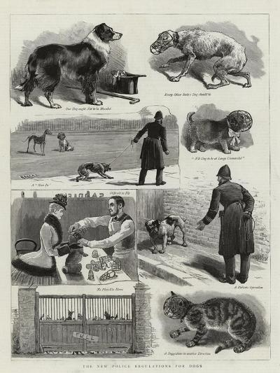 The New Police Regulations for Dogs--Giclee Print