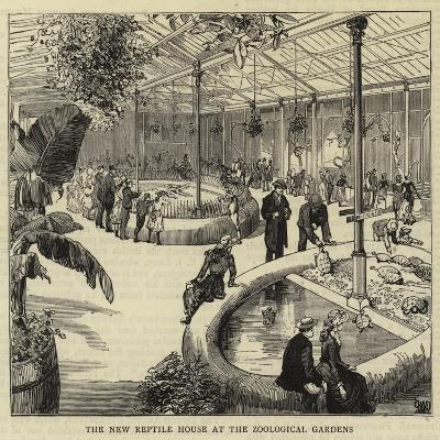 The New Reptile House at the Zoological Gardens--Giclee Print