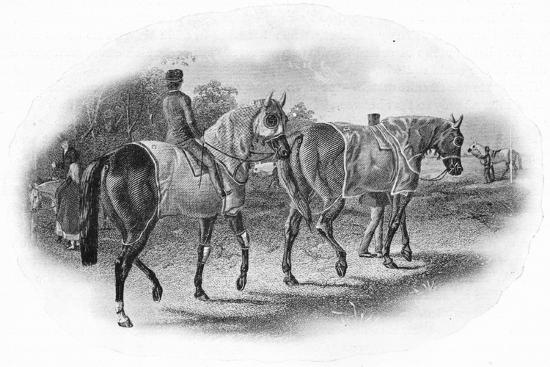 'The Next Race', 19th century, (1911)-Unknown-Giclee Print