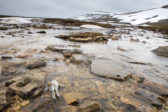The North Atlantic, Bear Island, Mountain Landscape, Rocks, Snow, Melt Water-Frank Lukasseck-Photographic Print