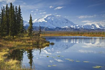 The North Face and Peak of Mt. Mckinley Is Reflected in a Small Tundra Pond in Denali National Park-Design Pics Inc-Photographic Print