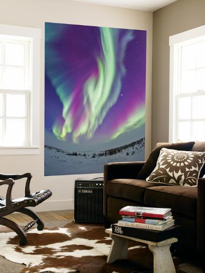 The Northern Lights in Churchill, Manitoba, Canada-Stocktrek Images-Wall Mural