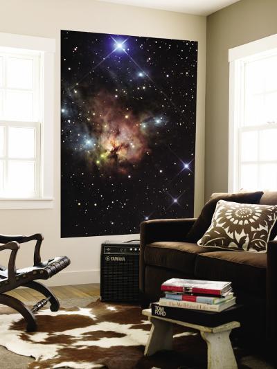 The Northern Trifid Nebula--Wall Mural