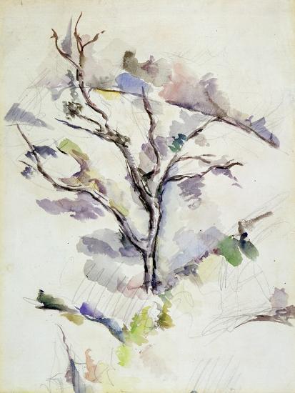The Oak-Paul C?zanne-Giclee Print