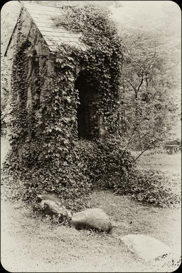 The Old Bell Tower at Warren Wilson College, Covered in Vines-Amy & Al White & Petteway-Photographic Print