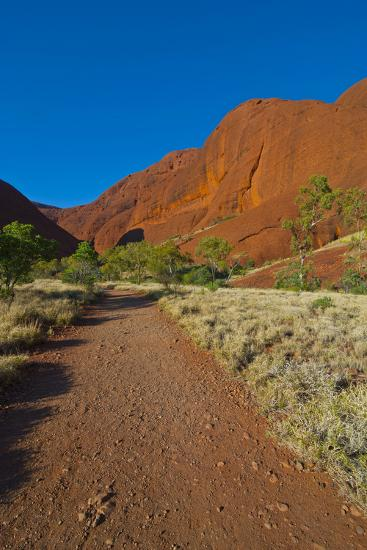 The Olgas (Kata Tjuta), Uluru-Kata Tjuta Nat'l Park, UNESCO Site, Northern Territory, Australia-Michael Runkel-Photographic Print