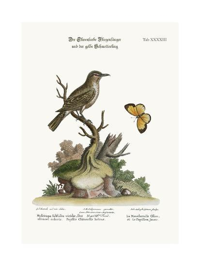 The Olive-Coloured Flycatcher and the Yellow Butterfly, 1749-73-George Edwards-Giclee Print