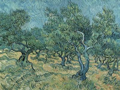 https://imgc.artprintimages.com/img/print/the-olive-grove_u-l-pphii00.jpg?p=0