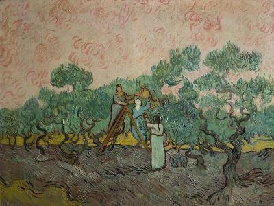 The Olive Pickers, 1889-Vincent van Gogh-Giclee Print