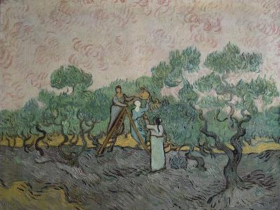 The Olive Pickers, Saint-Remy, c.1889-Vincent van Gogh-Giclee Print