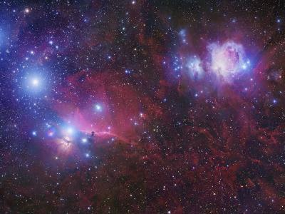 The Orion Deepfield Region, Showing the Orion Molecular Cloud and the Orion Ob1 Association-Robert Gendler-Photographic Print