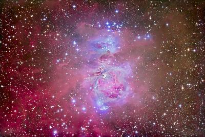 The Orion Nebula Region-Stocktrek Images-Photographic Print