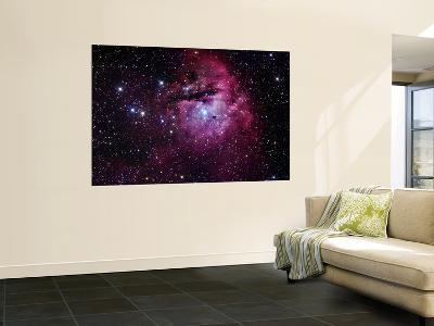 The Pacman Nebula--Wall Mural