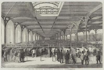 The Paris Agricultural Exhibition, the Cattle, General View--Giclee Print