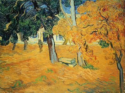 The Park at St. Paul's Hospital, St. Remy, 1889-Vincent van Gogh-Giclee Print