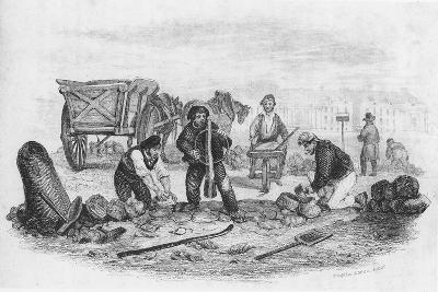 The Pavier, from 'The Book of Trades', 1836--Giclee Print