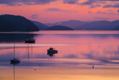 The Peaceful and Tranquil Waters of Queen Charlotte Sound at Dawn, South Island, New Zealand-Garry Ridsdale-Photographic Print