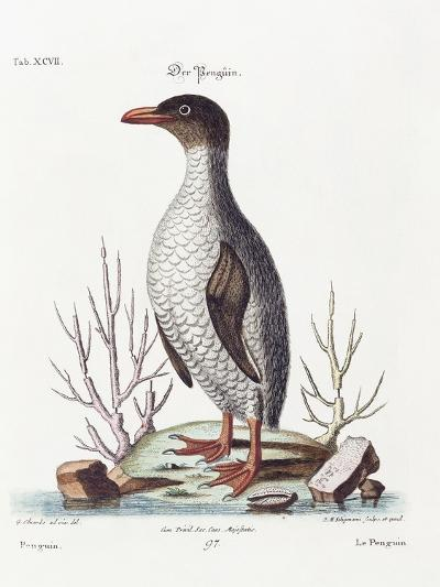 The Penguin, 1770-George Edwards-Giclee Print