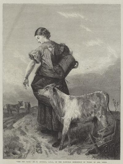 The Pet Calf-Richard Ansdell-Giclee Print