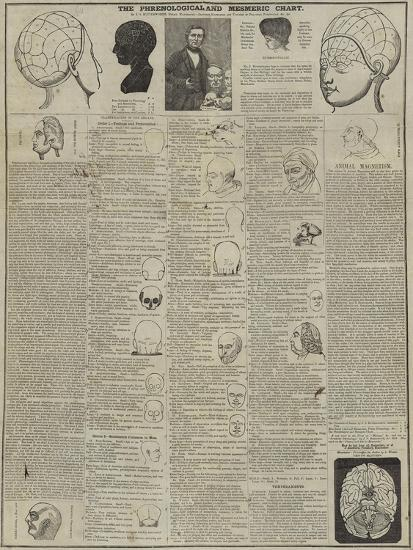 The Phrenological and Mesmeric Chart--Giclee Print