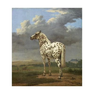 The Piebald Horse by Paulus Potter--Giclee Print