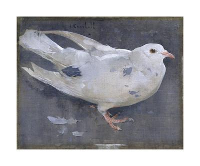 https://imgc.artprintimages.com/img/print/the-pigeon_u-l-f8mc5i0.jpg?p=0