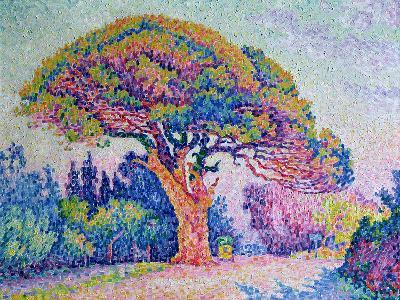 Populaire préféré The Pine Tree at St. Tropez, 1909 Giclee Print by Paul Signac #PI_65