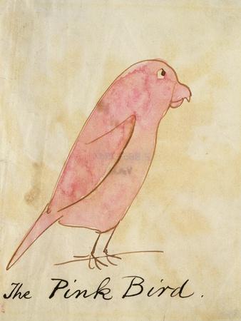 https://imgc.artprintimages.com/img/print/the-pink-bird_u-l-pf5aad0.jpg?p=0