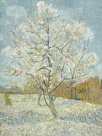 https://imgc.artprintimages.com/img/print/the-pink-peach-tree_u-l-q1ga1a30.jpg?p=0