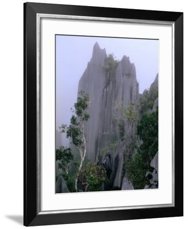 The Pinnacles Limestone Fores, from the Lookout on Gunung Api, Gunung Mulu NP, Sarawak, Malaysia-Mark Daffey-Framed Photographic Print