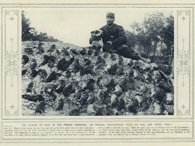 The Plague of Rats in the French Trenches, an Official Rat-Catcher, with His Dog, and their Bag--Photographic Print