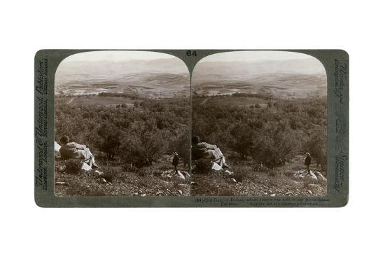 The Plain of Dothan, Palestine, 1900-Underwood & Underwood-Giclee Print
