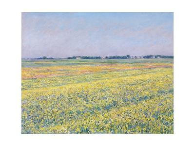 The Plain of Gennevilliers, Yellow Fields-Gustave Caillebotte-Giclee Print