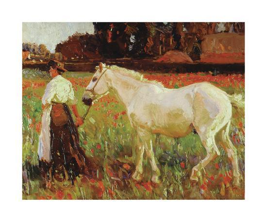 The Poppy Field-Sir Alfred Munnings-Premium Giclee Print