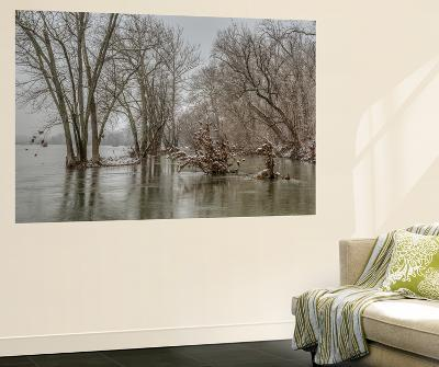 The Potomac River Inside the Beltway on a Winter Day-Irene Owsley-Wall Mural
